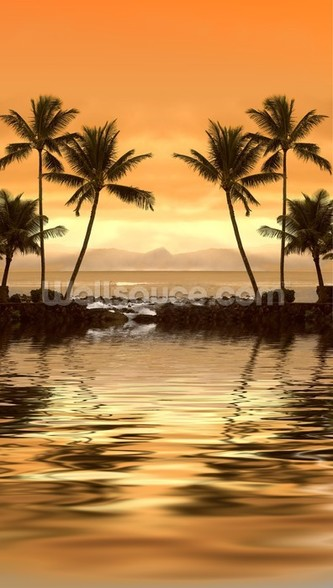 Tropical Sunset wallpaper mural