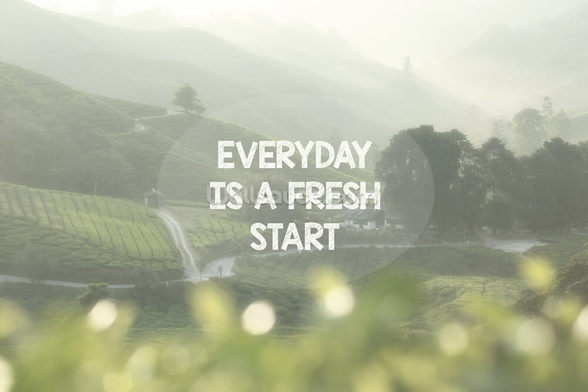 Everyday is a Fresh Start mural wallpaper