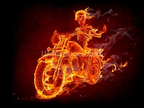 Fire Biker mural wallpaper