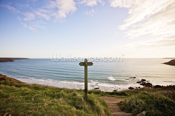 Pembroke coast parth wallpaper mural