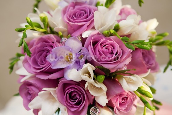 Purple Rose Bouquet wallpaper mural