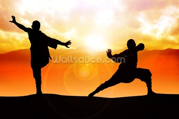 Martial Arts mural wallpaper