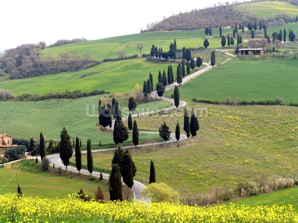 Tuscan Landscape wall mural