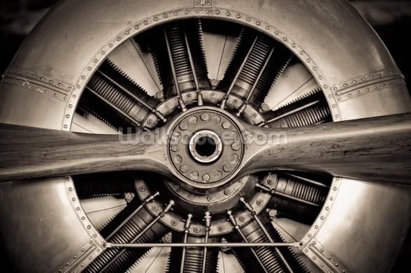 Vintage Propeller Aircraft Engine wall mural