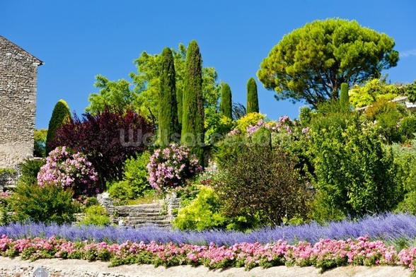 Gardens at Gordes, Provence wall mural
