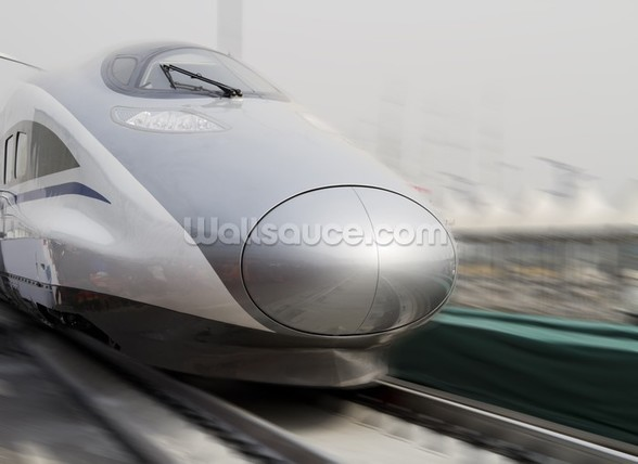 Bullet Trains wall mural