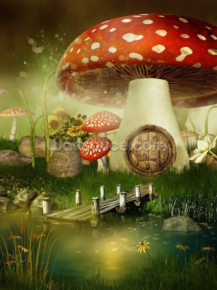 Toad Stool House wallpaper mural