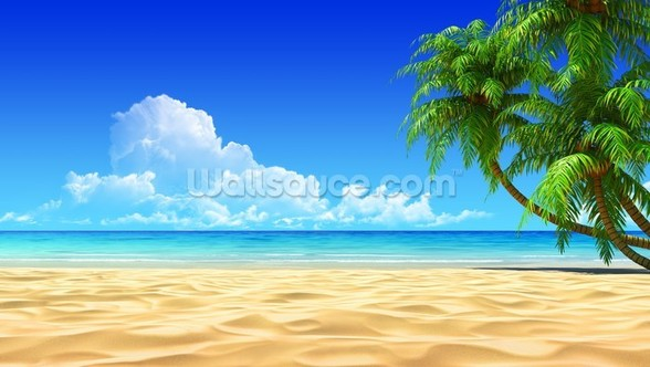 Palms on Empty Idyllic Tropical Beach mural wallpaper