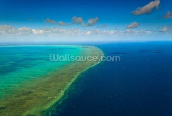 Great Barrier Reef wallpaper mural