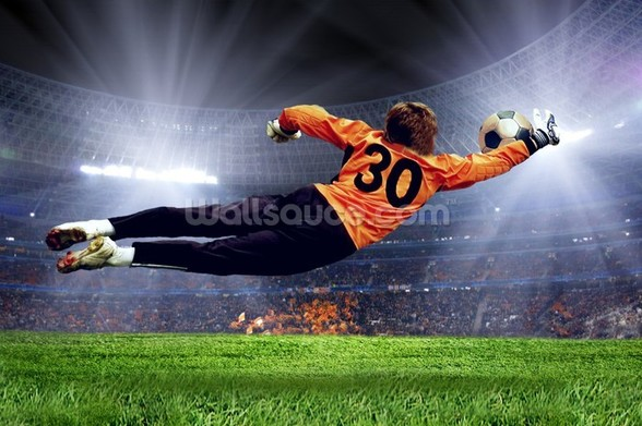 Football Goalkeeper wall mural
