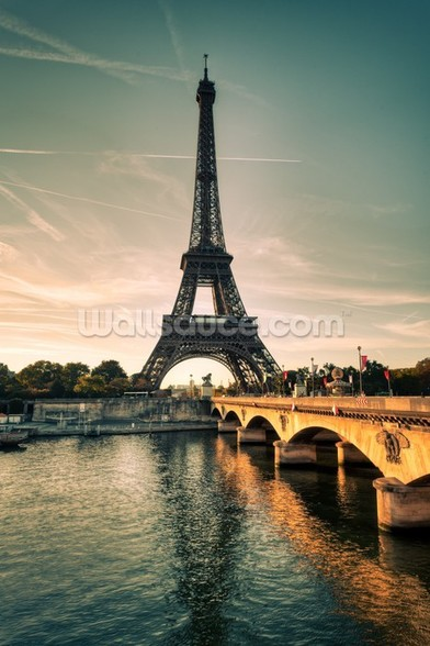 Eiffel Tower, France wall mural