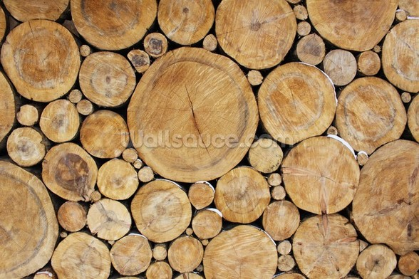 Stacked Round Logs wallpaper mural