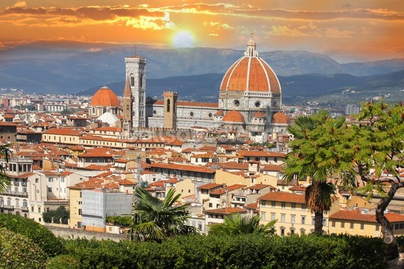 Florence wall mural