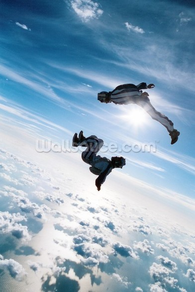 Freefall Skydiving wall mural