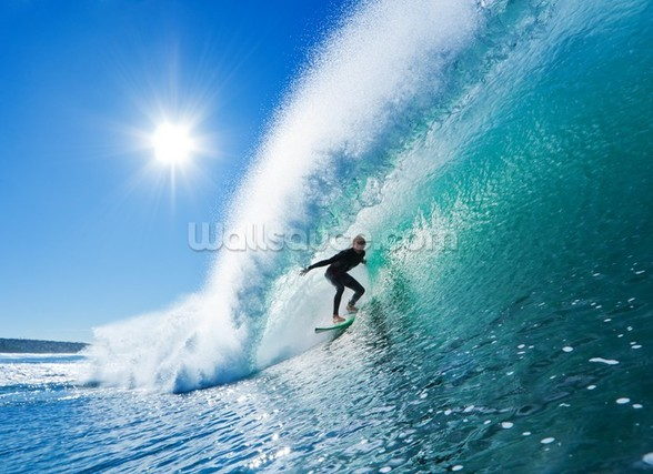 Surfing the Wall wall mural