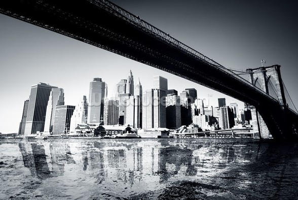 New York Black & White mural wallpaper