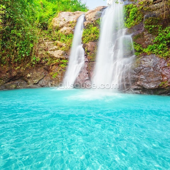 Tropical Waterfall mural wallpaper