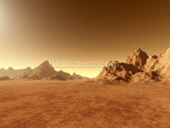Mars Surface wall mural