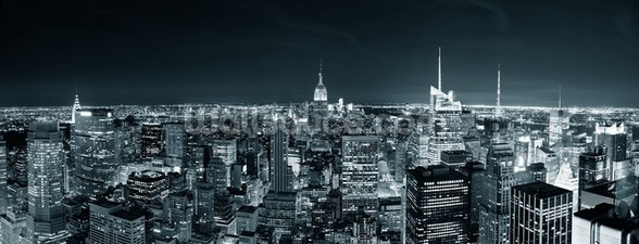 New York Manhattan Skyline wall mural