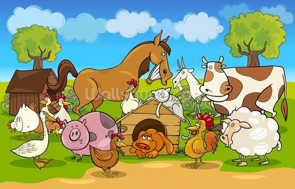 Farm Animals wall mural
