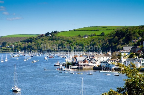 Kingswear Devon wall mural