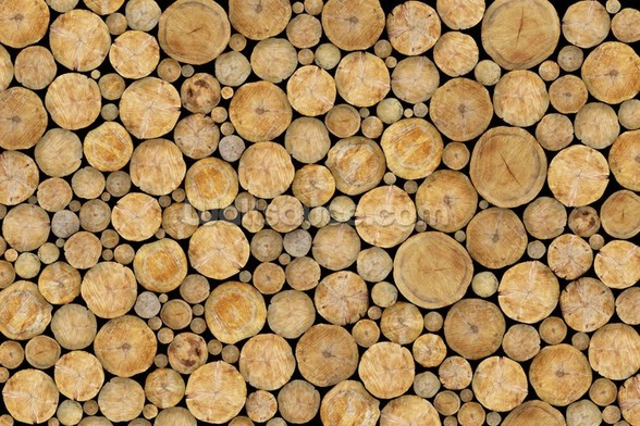 Stacked Log Pile wall mural