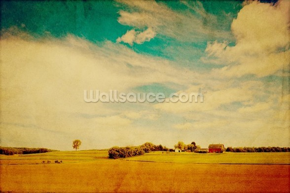 American Country wall mural