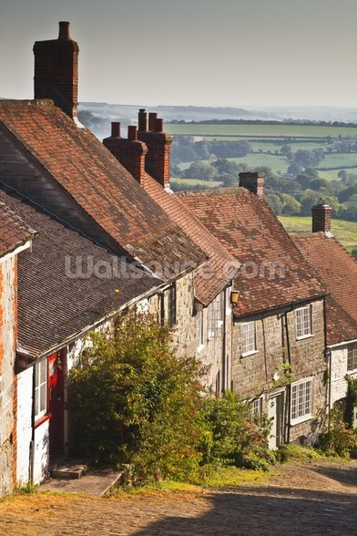 Gold Hill in Shaftesbury, Dorset wall mural