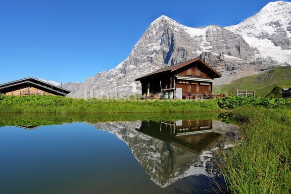 Eiger View wall mural