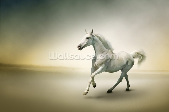White Horse in Motion wallpaper mural