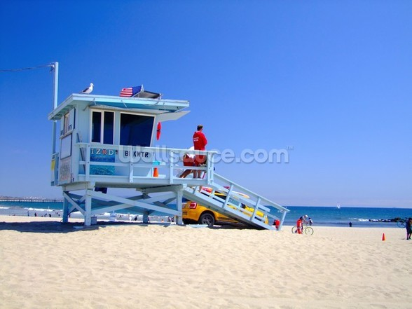 Los Angeles Lifeguards mural wallpaper
