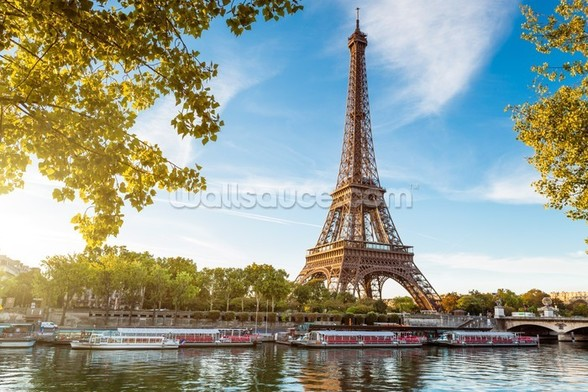 River Seine & Eiffel Tower wall mural