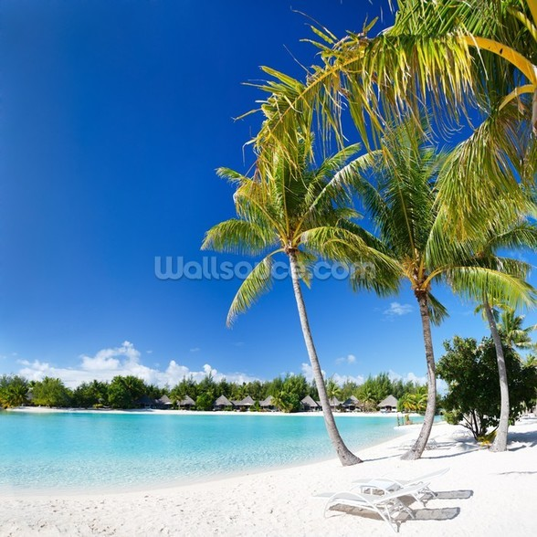 Bora Bora Beach mural wallpaper