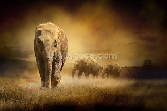 Sepia Elephants mural wallpaper