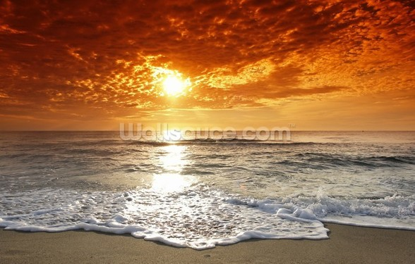 Ocean Sunset wall mural