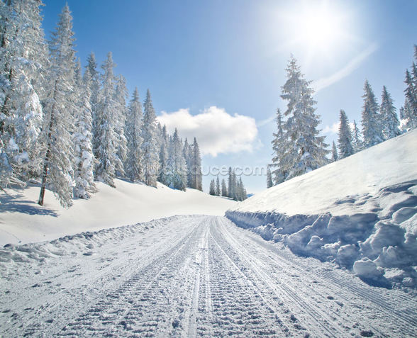 Empty Snow Covered Road wallpaper mural