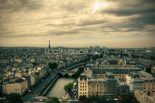 Paris Skyline from Notre Dame wall mural