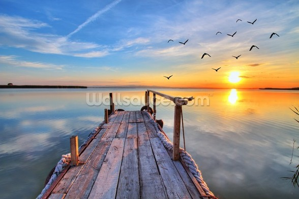 Lake Sunrise mural wallpaper