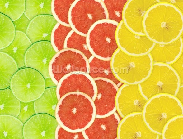 Citrus Slices mural wallpaper