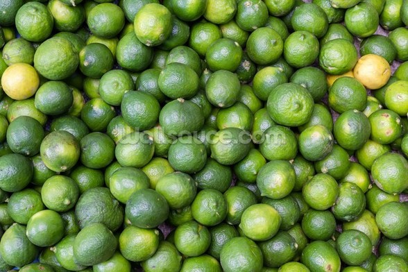 Green Limes wall mural
