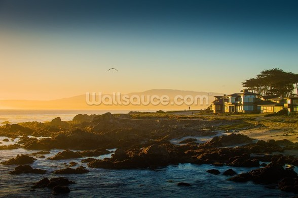 Sunrise at Monterey, California mural wallpaper