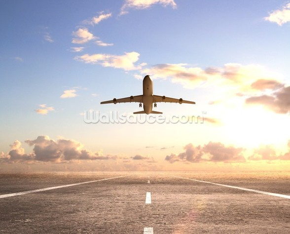 Aeroplane On Runway wall mural