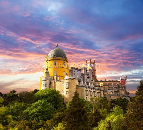 Sintra - Castle of the Moors wallpaper mural