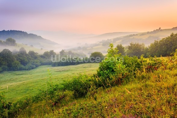 Misty Hills mural wallpaper