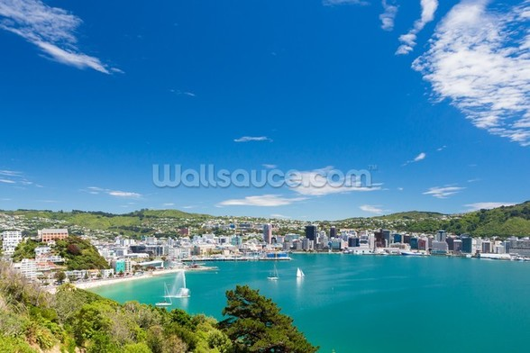 Bay of Wellington wallpaper mural