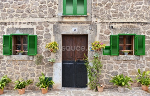 Village House with Green Shutters wall mural