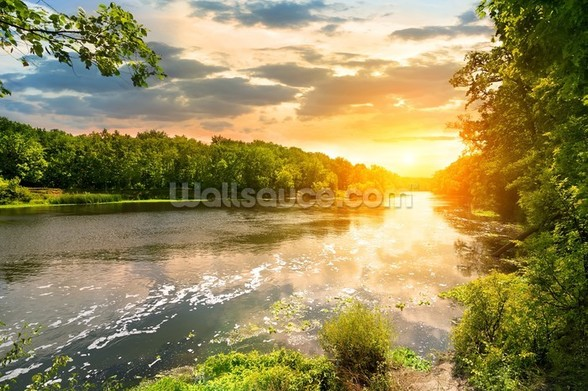 River Sunset wall mural