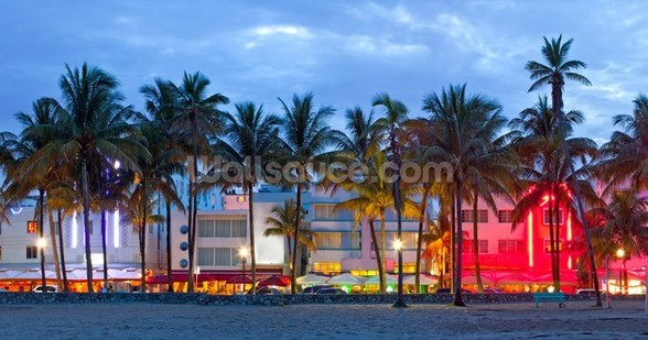 Miami Beach mural wallpaper