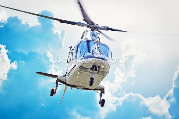 Helicopter Landing wall mural