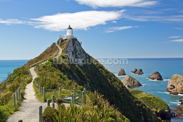 Nugget Point wall mural
